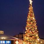PIER 39 Christmas Tree