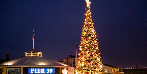 Letu0027s light up San Franciscou0027s favorite harbor with festive lights and holiday spirit! Happy Holidays from all of us here at PIER 39 Marina! & Holiday Guest docking and Boat Slip Rental at San Franciscou0027s ... azcodes.com